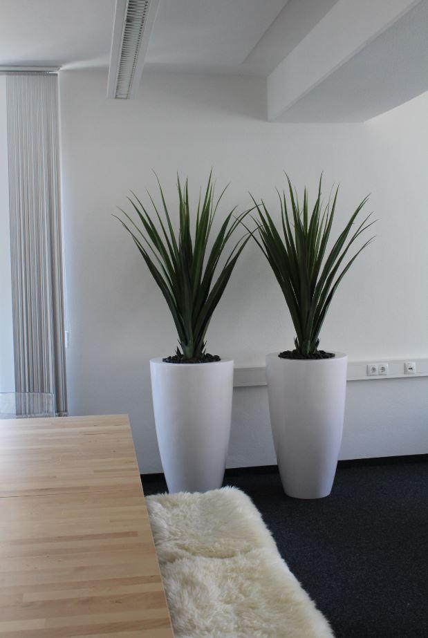 raumbegr nung mit kunstpflanzen in stuttgart pforzheim und karlsruhe. Black Bedroom Furniture Sets. Home Design Ideas
