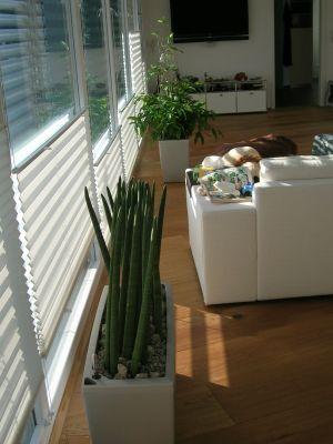 wohnraumbegr nung in pforzheim raumbegr nung innenraumbegr nung objektbegr nung. Black Bedroom Furniture Sets. Home Design Ideas