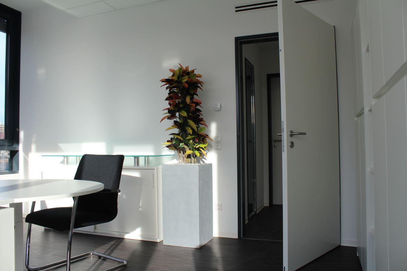 b robegr nung mit hydrokulturpflanzen in einem b ro in karlsruhe. Black Bedroom Furniture Sets. Home Design Ideas
