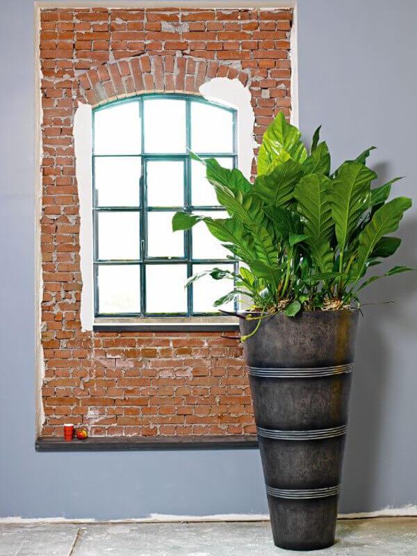 begr nungen begr nung terrasse balkon gartenpflege heckenschnitt strauchschnitt bepflanzungen. Black Bedroom Furniture Sets. Home Design Ideas