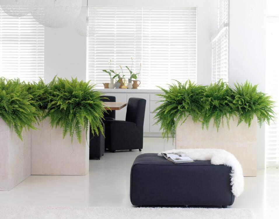 raumbegr nung innenraumbegr nung objektbegr nung b robegr nung wintergartenbegr nung hydrokultur. Black Bedroom Furniture Sets. Home Design Ideas