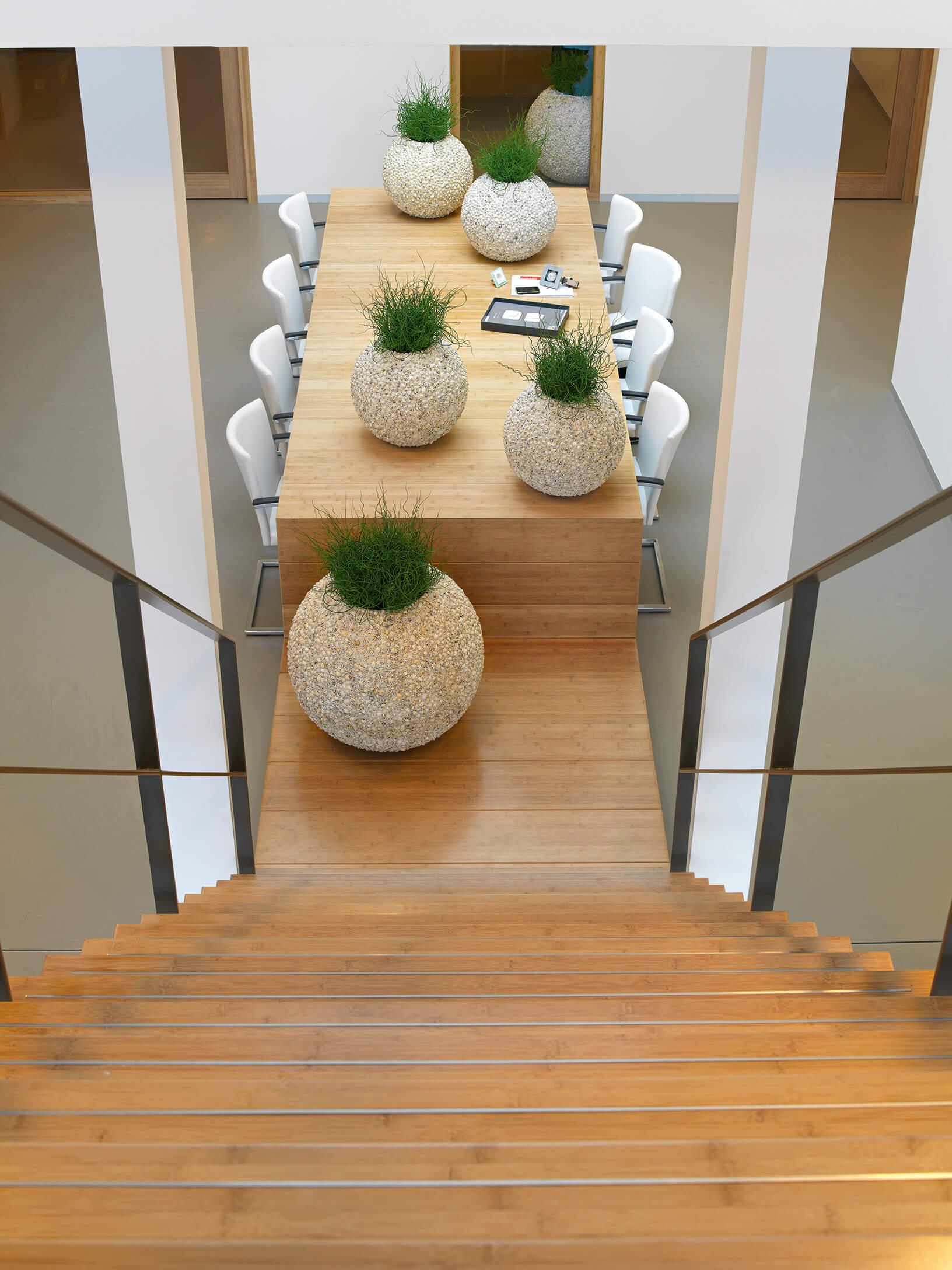 hydrokultur stuttgart begr nung von b ror umen mit hydrokulturen gr npflanzen f r die. Black Bedroom Furniture Sets. Home Design Ideas