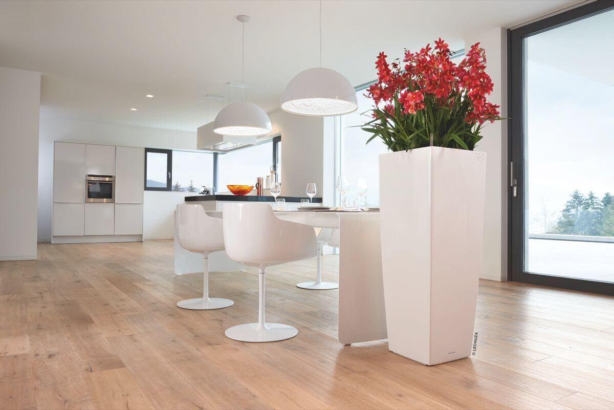 gr ner ume begr nung gr npflanzen pflanzen gr ner service. Black Bedroom Furniture Sets. Home Design Ideas