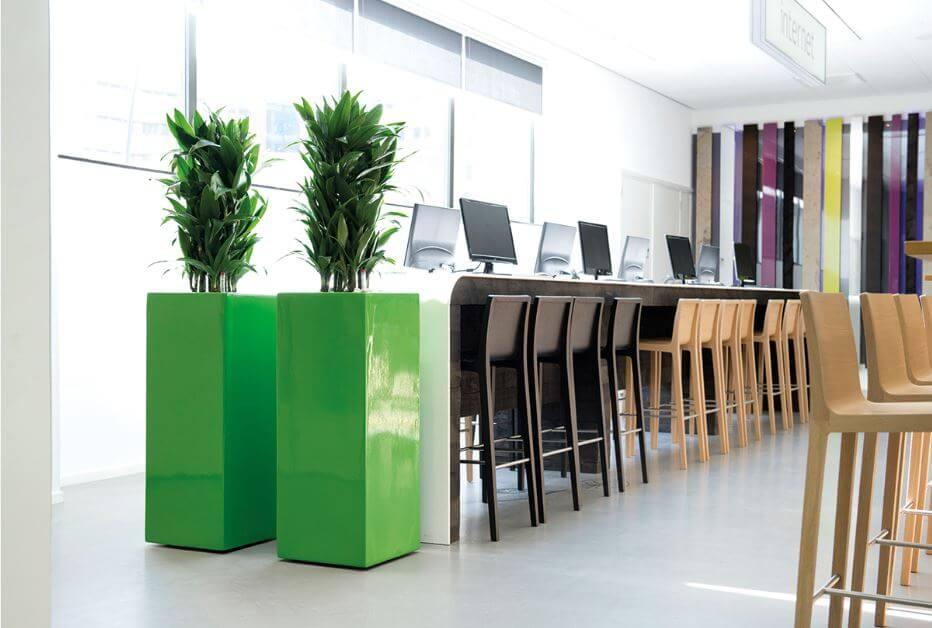 raumteiler mit hydrokultur pflanzen und k nstlichen. Black Bedroom Furniture Sets. Home Design Ideas